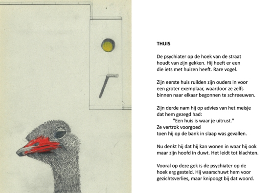 THUIS-WEB